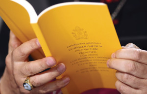 "A copy of the apostolic exhortation Evangelii Gaudium (""The Joy of the Gospel"") by Pope Francis is seen during a news conference at the Vatican November 26 (CNS photo)"