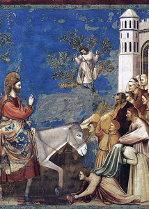 Zaccheus climbing into a tree to see Jesus, in a painting by Giotto.